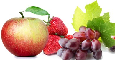 New Jersey Fruit Growers